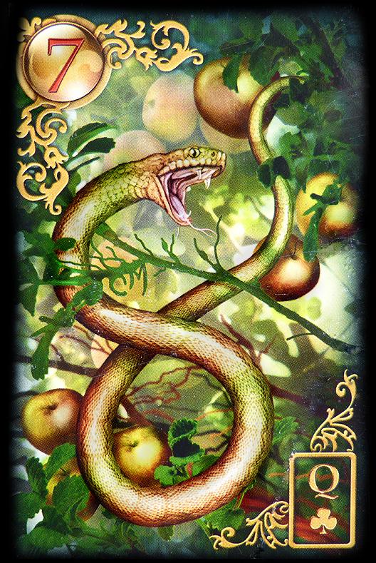 Lenormand Tageskarte die Schlange