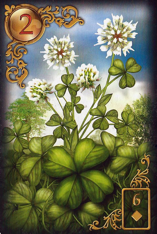 Meaning Of The Lenormand Tarot Day Card The Clover